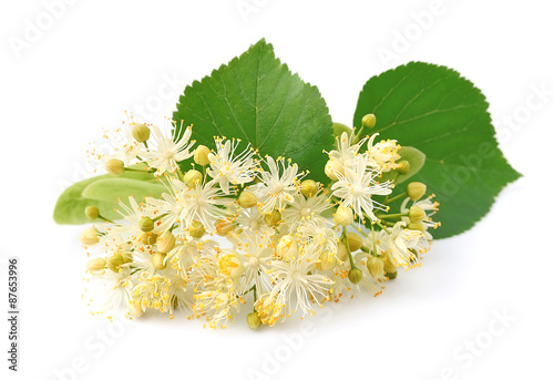 kwiaty-lipy