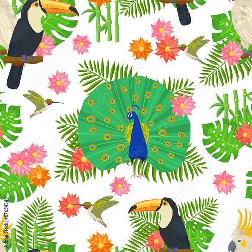 kolorowe-ptaki
