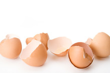 Brown Chicken Eggshells – Cr...