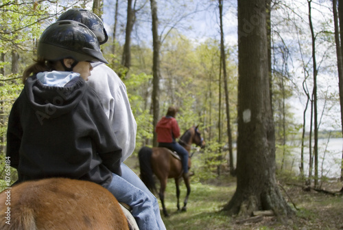 Photo Stands Horseback riding Horseback Riding in the Forest – A family goes horseback riding in the forest.