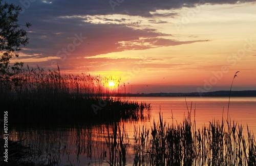 Fototapeta Лучи вечернего солнца obraz na płótnie