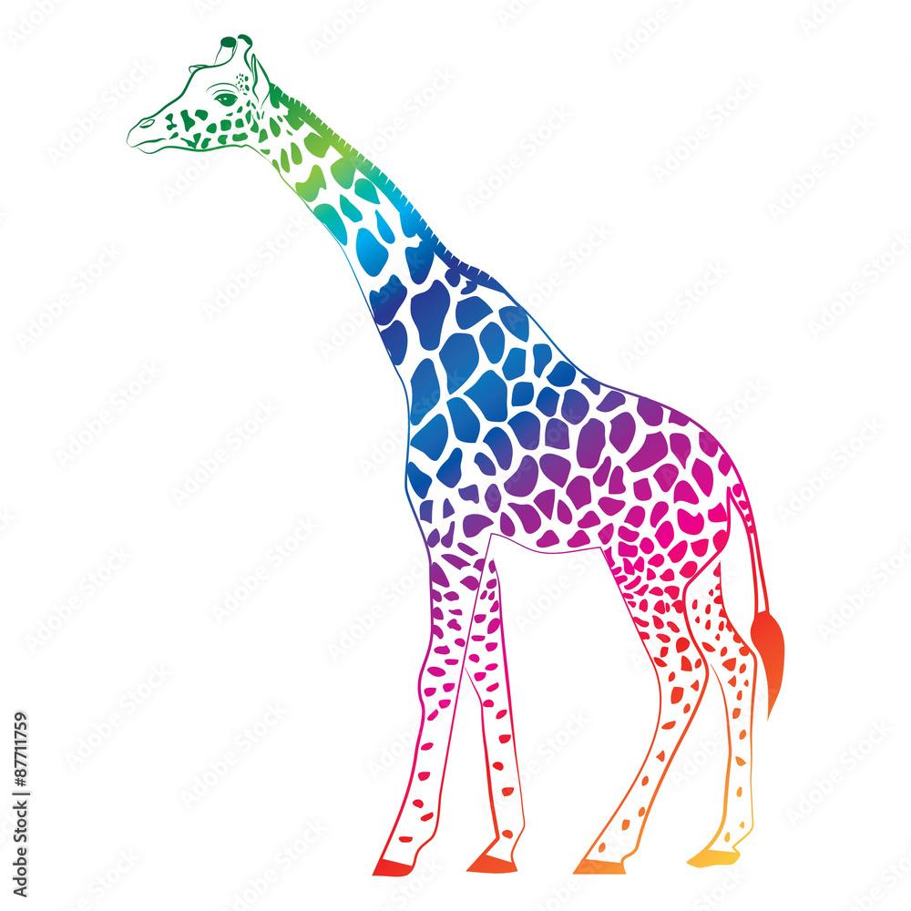 Giraffe colorful vector