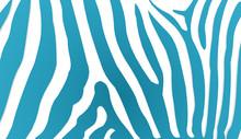 Zebra Stripes Rendered