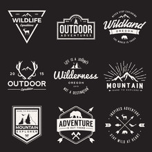 Vector Set Of Wilderness And N...