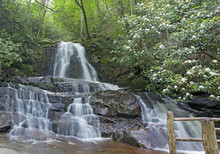 Laurel Falls, Great Smoky Moun...