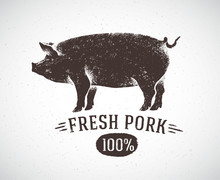 "Graphic Pig And Labeled: ""Fresh Pig"". Vector Illustration, Drawn By Hand."