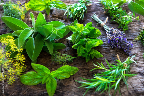 Fototapeta Fresh herbs on wooden background