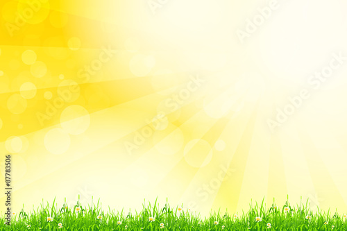 Poster Printemps Fresh green grass with yellow bokeh and sunlight. Beauty natural