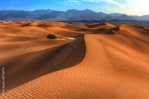 Canvas Print Sand dunes in Death Valley