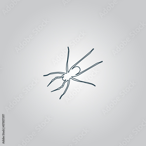 Fotografie, Obraz  Spider icon