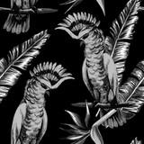 parrot tropical pattern - 87821155