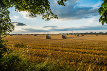 Group Of Freshly Cut Straw Bales In A Field At Sunset