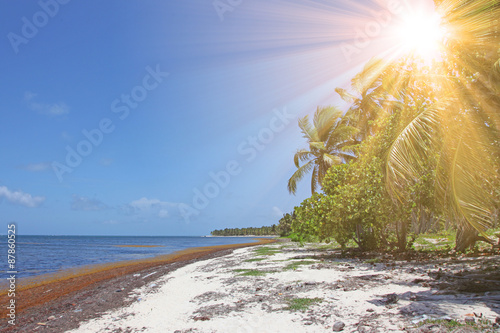 Deurstickers Strand Blick vom Strand auf das Meer in der Karibik