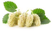 White Mulberry Isolated On The White Background