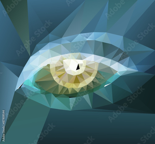color polygonal eye design