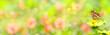 Leinwandbild Motiv Banner  -  Garden with beautiful flowers and butterfly