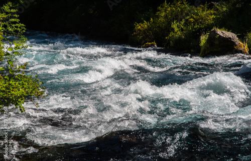 River Rapids in a Stream in the Oregon Cascade Mountains