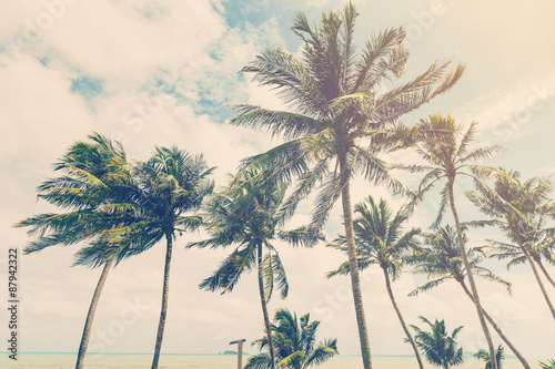 Staande foto Retro coconut plam tree on beach of nature background in vintage style