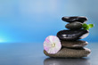 Stack of spa stones with green leaves and flower on colorful blurred background