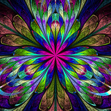 Multicolored symmetrical fractal flower in stained-glass window - 87982775