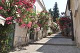 Wąska kamienna ulica z kwiatami we włoskim mieście - 87993538