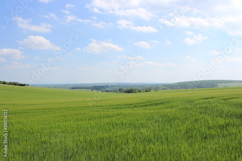 Poster Lime groen チェコ共和国のモラヴィア大草原