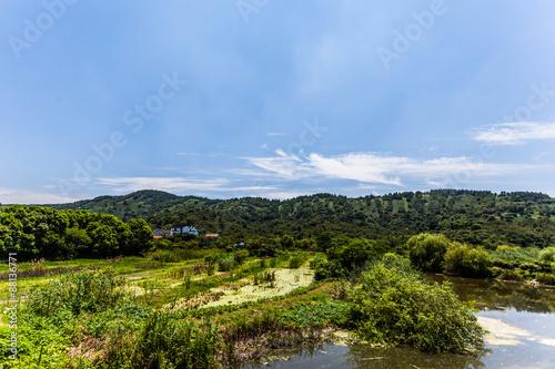 Fototapety, obrazy: teeplantagen am taihu lake