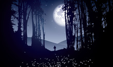 Dark Forest With Man Walking A...