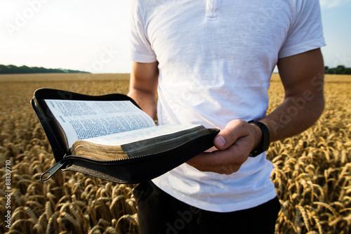 Obraz na plátně Muž, který držel otevřené bibli v pšeničném poli