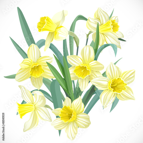 Canvas Lush yellow daffodils