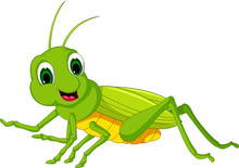 Cute Green Locust Cartoon