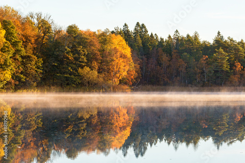 Fototapety, obrazy: iew of a Deciduous forest Colourful Autumn with fog on the lake