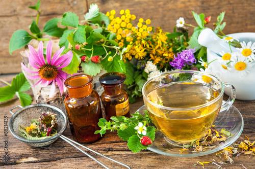 Fototapeta Cup of herbal tea with wild flowers and various herbs obraz