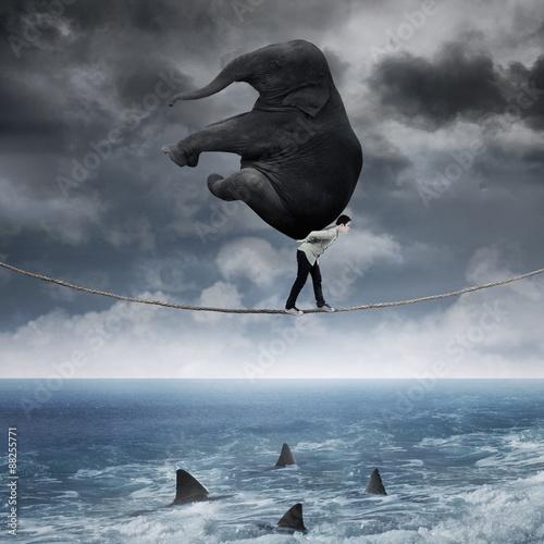 Fototapeta Person carrying an elephant above sea