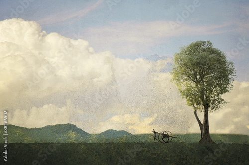 In de dag Khaki Vintage landscape with single tree and carter