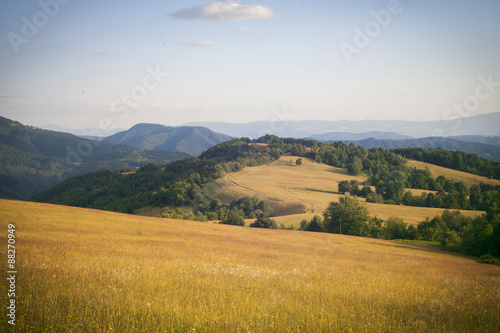 Canvas Prints Hill Hills in the Carpathian Mountains