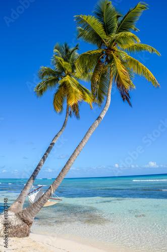 hamak-miedzy-palmami-na-tropikalnej-wyspie
