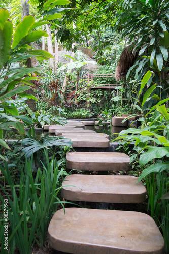Krocząca ścieżka przez tajską naturę.