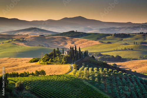 Scenic Tuscany landscape at sunrise, Val d'Orcia, Italy - 88285168