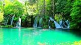 Fototapeta Landscape - Krajobraz Jezior Plitwickich w Chorwacji