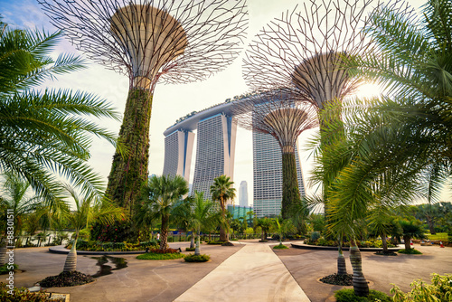 Foto op Aluminium Singapore The Supertree at Gardens by the Bay and marina bay sand