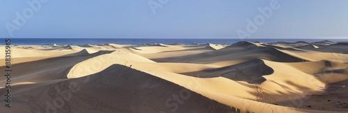 Panorama of sand dunes of , Maspalomas, Gran Canaria, Spain