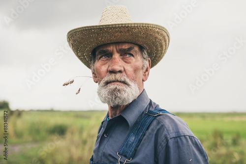 Thoughtful senior farmer chewing grass Billede på lærred