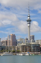 Sky Tower And Harbour, Auckland, North Island, New Zealand