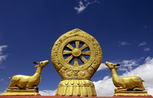 A Golden Dharma Wheel And Deer Sculptures On The Sacred  Jokhang Temple Roof, Barkhor Square, Lhasa, Tibet, China