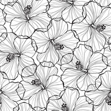 Black And White  Seamless Patt...