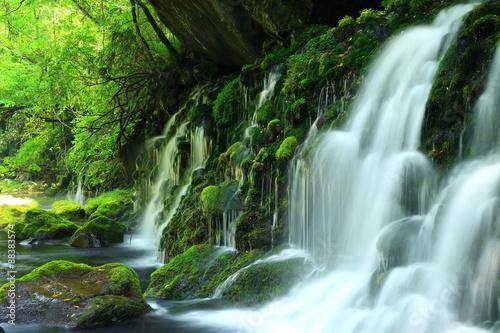 Foto op Canvas Watervallen 秋田県 夏の元滝伏流水