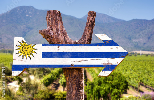 Poster Afrique du Sud Uruguay Flag wooden sign with winery background