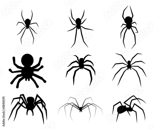 Tela Set of black silhouette spider icon isolated on white background