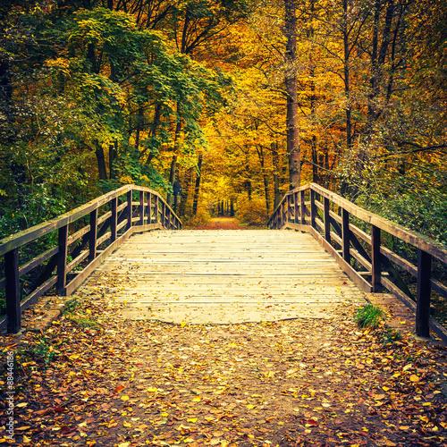 Foto op Canvas Weg in bos Bridge in autumn forest